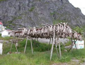 stokvissen in dorp A